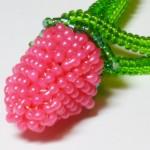 raspberry_clasp1